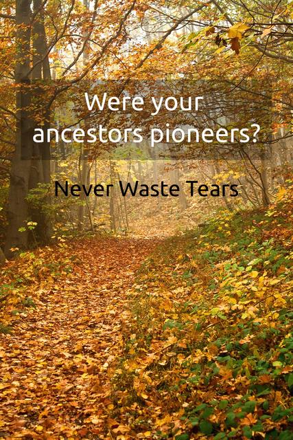 were your ancestors pioneers...