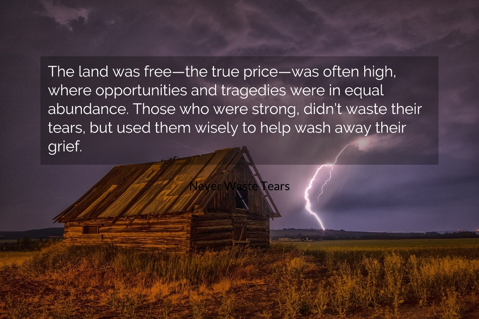 the land was freethe true pricewas often high where opportunities and tragedies...