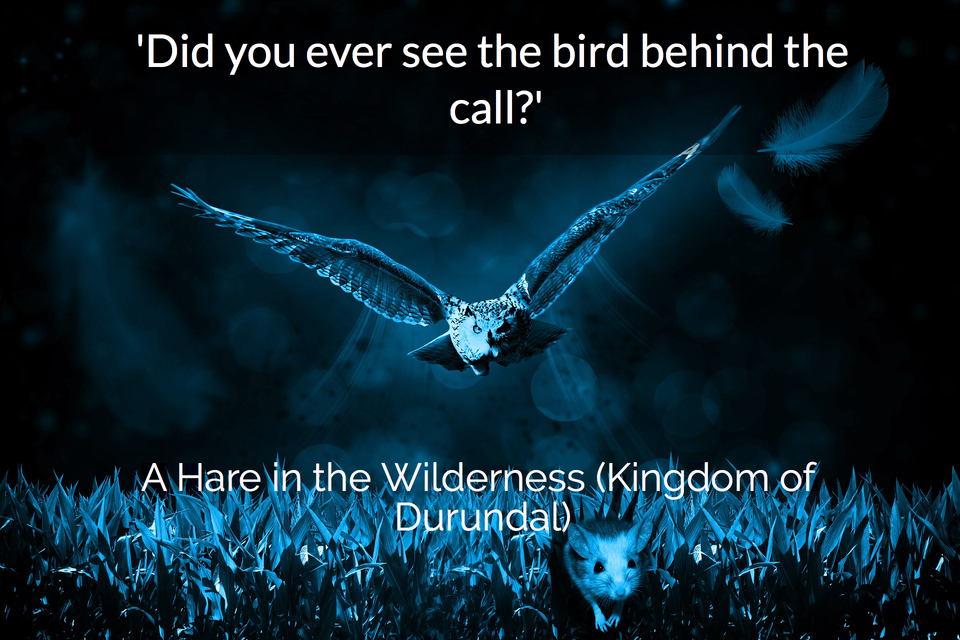 did you ever see the bird behind the call...