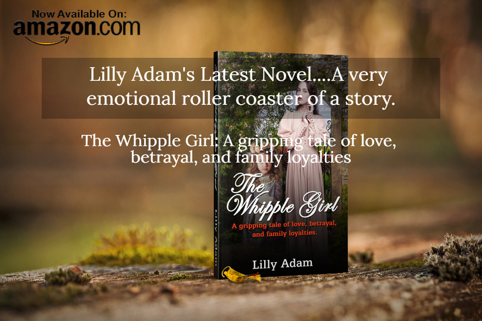 lilly adams latest novel a very emotional roller coaster of a story...