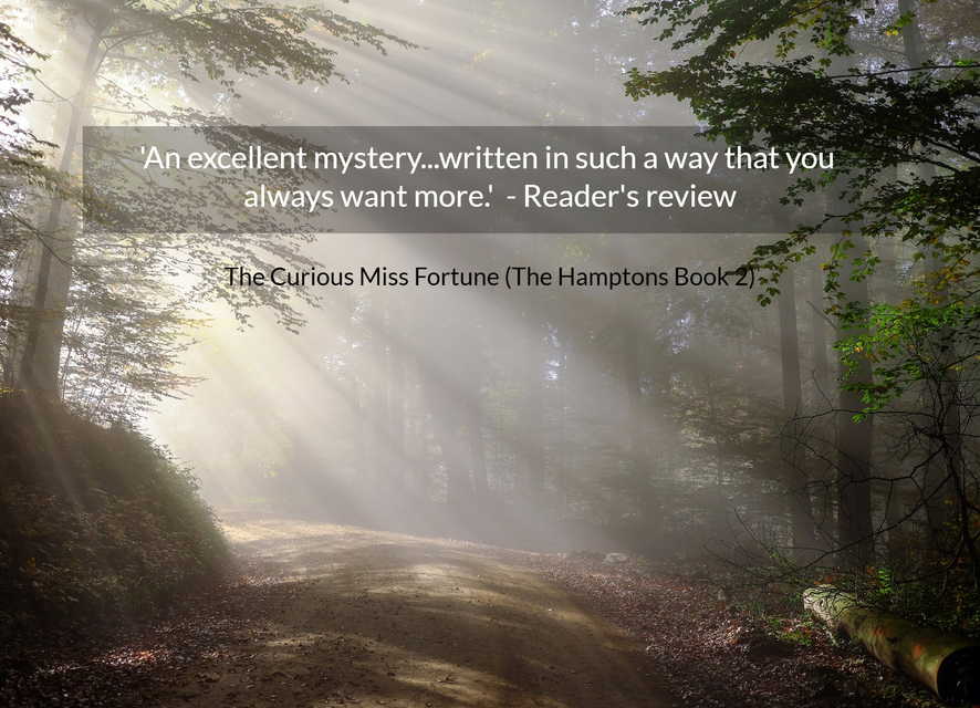 an excellent mystery written in such a way that you always want more readers...