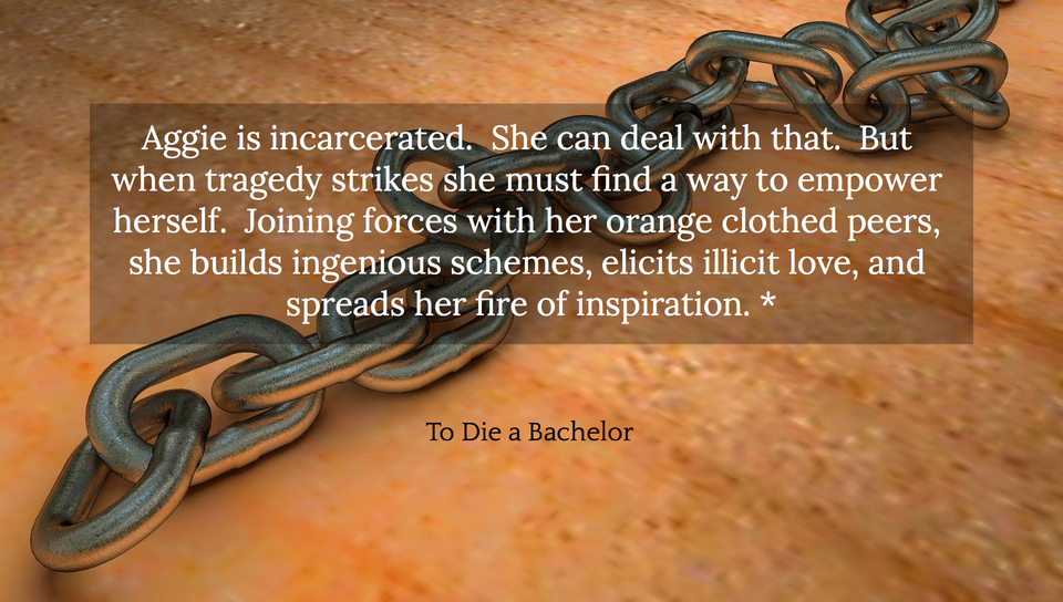 aggie is incarcerated she can deal with that but when tragedy strikes she must find a...