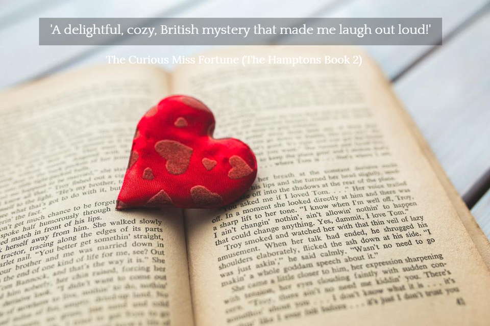 a delightful cozy british mystery that made me laugh out loud...