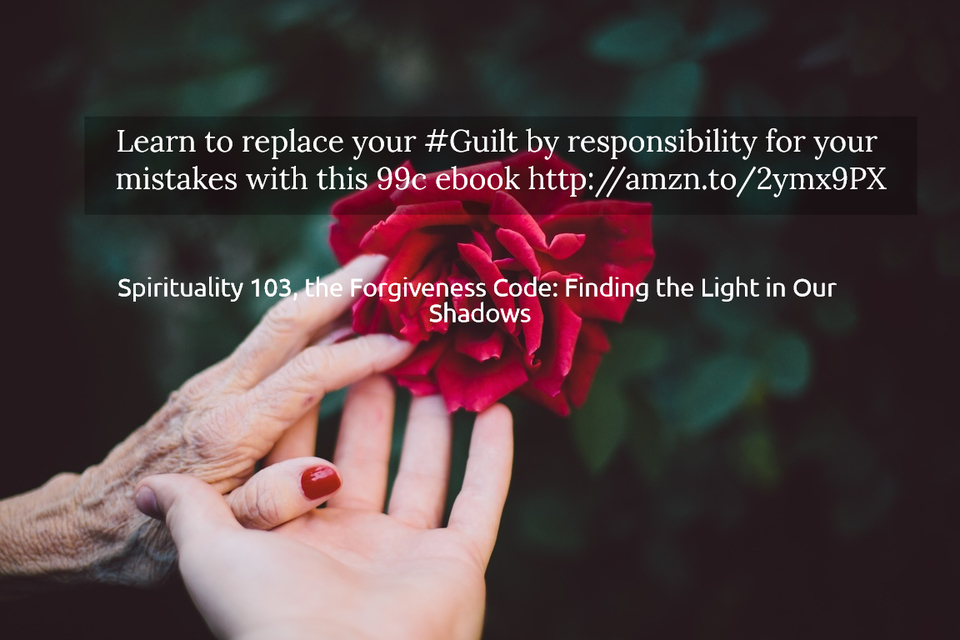learn to replace your guilt by responsibility for your mistakes with this 99c ebook...