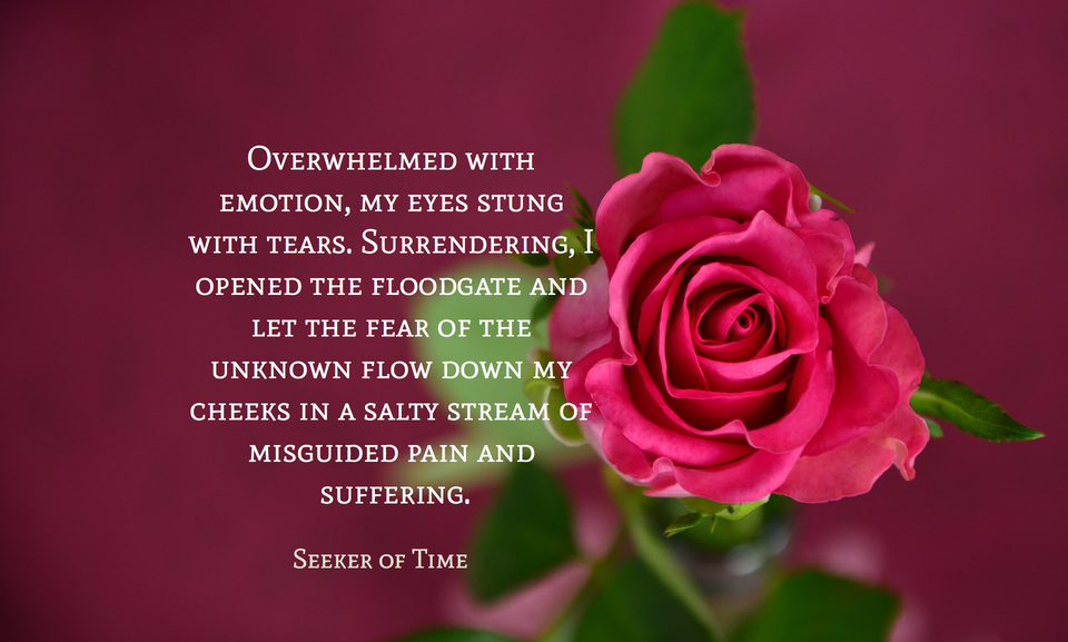 overwhelmed with emotion my eyes stung with tears surrendering i opened the floodgate...