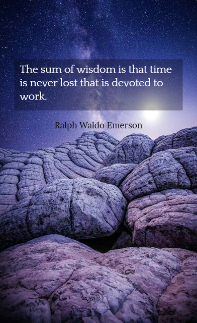 the sum of wisdom is that time is never lost that is devoted to work...