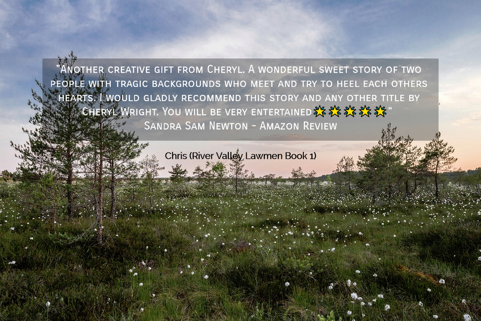 another creative gift from cheryl a wonderful sweet story of two people with tragic...