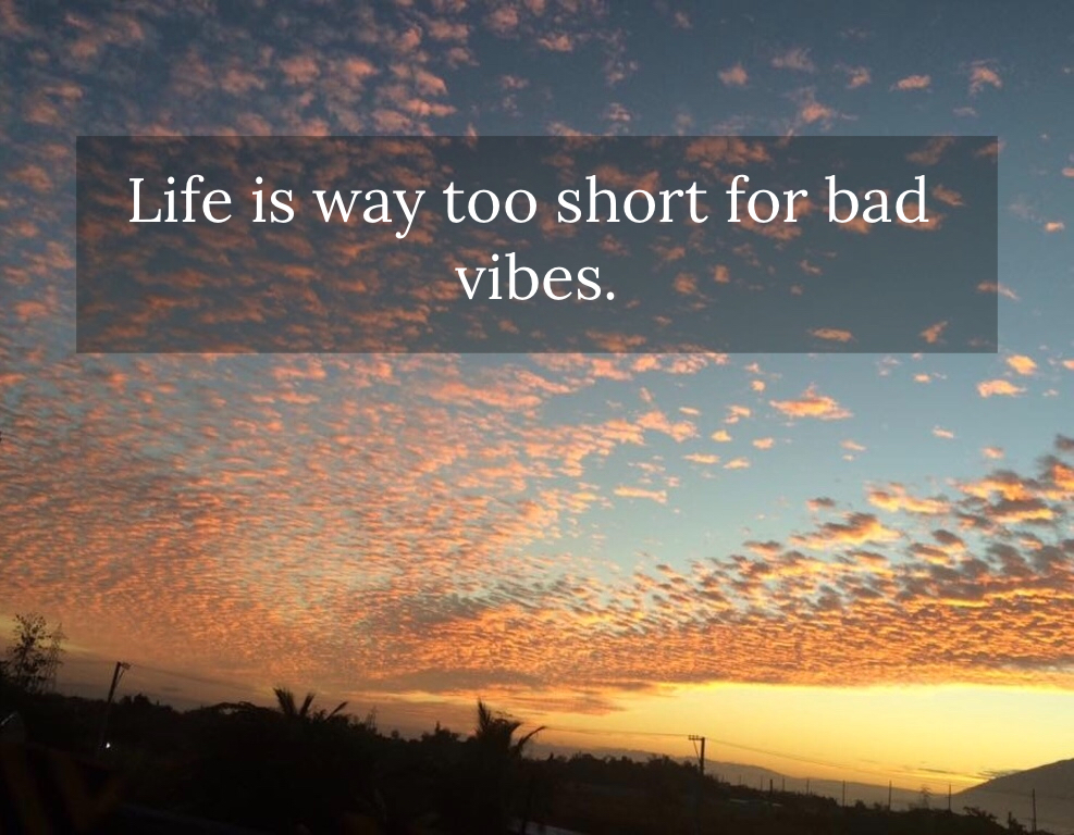 Life Is Way Too Short For Bad Vibes Picture Quotes 5302 Allauthor