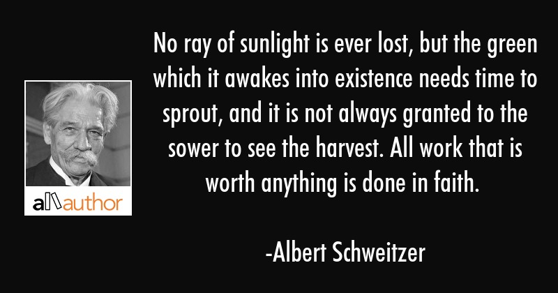 No ray of sunlight is ever lost, but the green which it awakes into existence needs time to sprout,... - Albert Schweitzer Quote