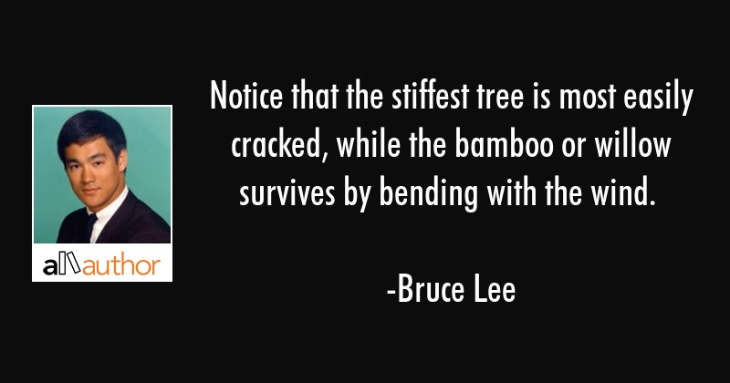 Notice that the stiffest tree is most easily cracked, while the bamboo or willow survives by... - Bruce Lee Quote