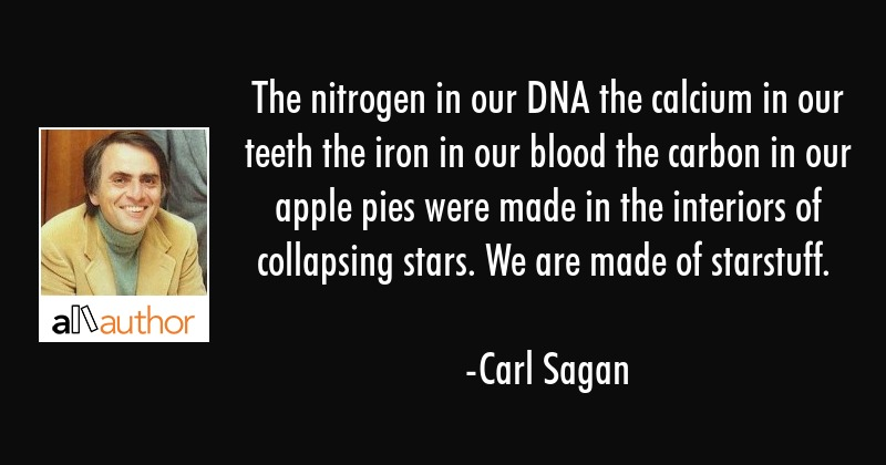 The nitrogen in our DNA the calcium in our teeth the iron in our blood the carbon in our apple pies... - Carl Sagan Quote