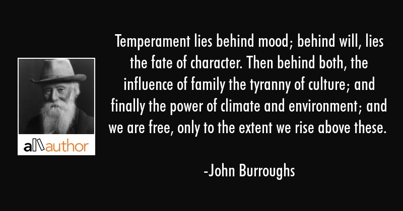 Temperament lies behind mood; behind will, lies the fate of character. Then behind both, the... - John Burroughs Quote