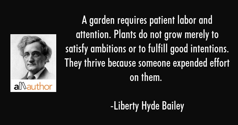 A Garden Requires Patient Labor And Quote