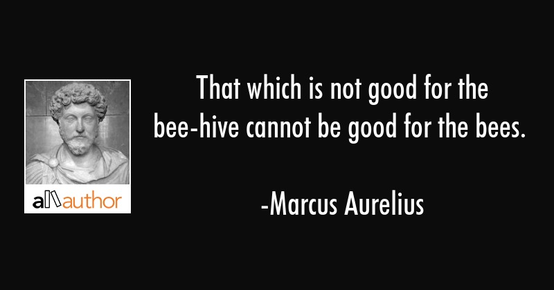 That which is not good for the bee-hive cannot be good for the bees. - Marcus Aurelius Quote