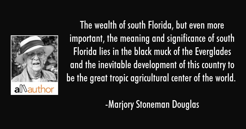 The wealth of south Florida, but even more important, the meaning and significance of south Florida... - Marjory Stoneman Douglas Quote