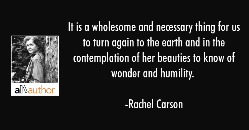 It is a wholesome and necessary thing for us to turn again to the earth and in the contemplation of... - Rachel Carson Quote