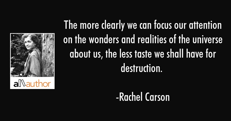 The more clearly we can focus our attention on the wonders and realities of the universe about us,... - Rachel Carson Quote