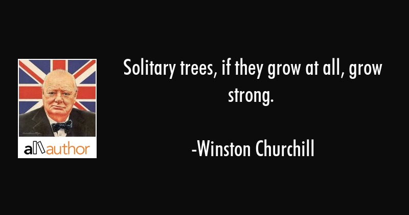 Solitary trees, if they grow at all, grow strong. - Winston Churchill Quote