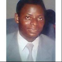 Author Emmanuel O Afolabi